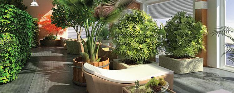 Jardin-interieur.jpg