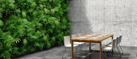 Installation de mur végétal